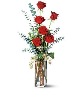 Expressing my Love half dozen red roses in Lebanon, NH | LEBANON GARDEN OF EDEN FLORAL SHOP