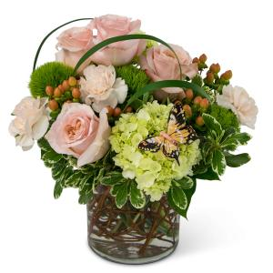 Expressions of Gratitude Arrangement in Fort Smith, AR | EXPRESSIONS FLOWERS, LLC