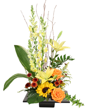 Expressive Blooms Arrangement in Storrs, CT | THE FLOWER POT