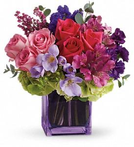 Exquisite Beauty floral arrangement