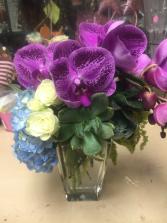 Exquisite Elegance Orchid, succulent and hydrangrea