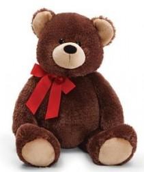 Extra Large Teddy Bear