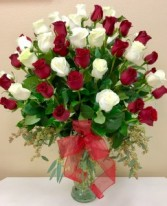 Love & Romance  48 Red and White Roses