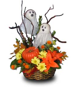flower basket halloween flower shop network