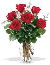 1/2 dz. Red Roses