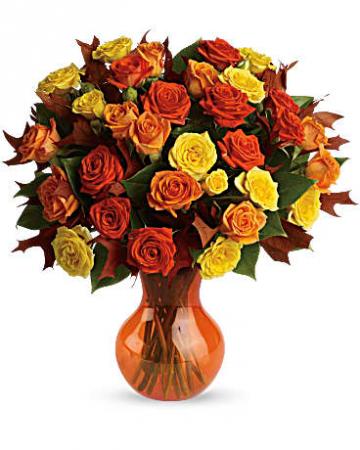 Fabulous Fall Roses TFL02-3