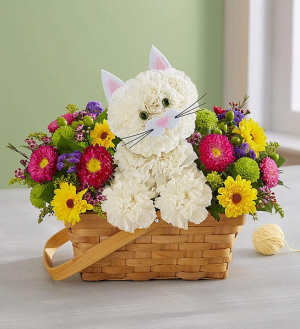 Fabulous Feline  174312  in Beaufort, SC | Smiling Petals Flower Shop