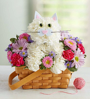 Fabulous Feline™  in Valley City, OH | HILL HAVEN FLORIST & GREENHOUSE