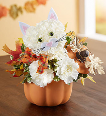 Fabulous Feline™  Fall flowers