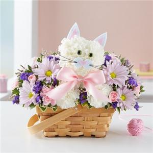 Fabulous Feline For Baby Girl  in Arlington, TX | Erinn's Creations Florist