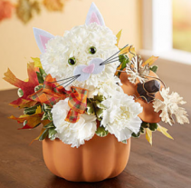 Fabulous Feline™ for Fall Arrangement