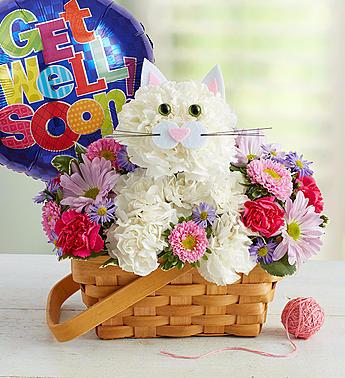 Fabulous Feline Get Well arrangement