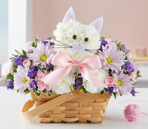 Fabulous Feline™ Girl Arrangement