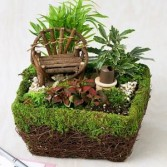 Fairy Garden 2. Thomaston florist & Greenhouse