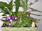 Fairy Garden dishgarden