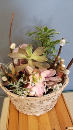 Fairy Garden Succulant planter