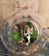 Fairy Gardens Custom Gardens Upon Availability