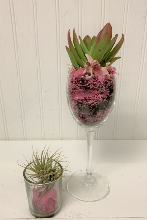 Fairy Precious Succulents/ set of 2
