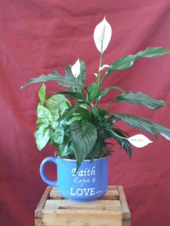 Faith, Hope and Love jumbo mug planter Plants