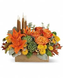 FALL 13 FALL BOX ARRANGEMENT