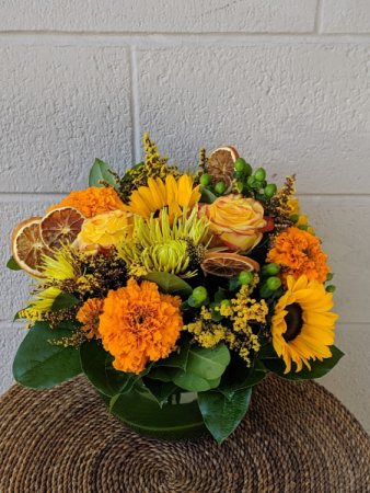 Circus and Citrus  Arrangement