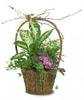 Pretty Garden  Basket Planter