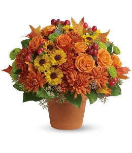F100 - Fall Around Beauty Fresh Arrangement