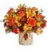 Fall  Autumn Colors T20T300B