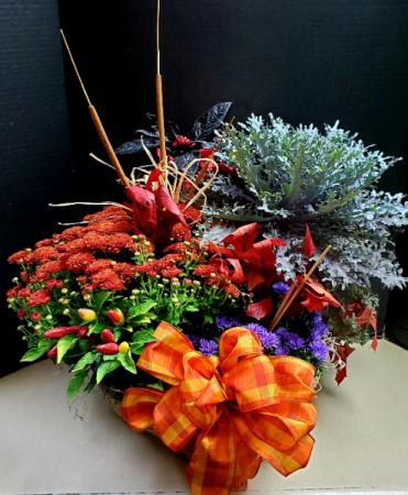 Fall Blooming Basket Seasonal plants in a basket!