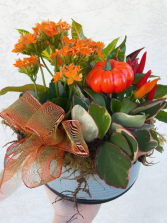 Fall Ceramic Planter