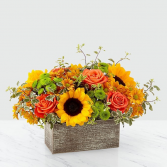 FALL CLASSIC Box Arrangement