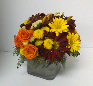 Fall Collection  in Brandon, FL | WHIDDEN FLORIST