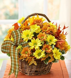 Fall Daisy Basket  in New Wilmington, PA | FLOWERS ON VINE