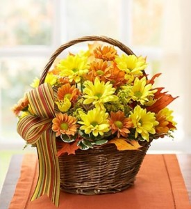 Fall Daisy Basket  in Elyria, OH | PUFFER'S FLORAL SHOPPE, INC.