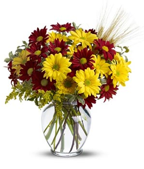 Fall Designer Special Arrangement in Wauseon, OH | ANYTHING GROWS
