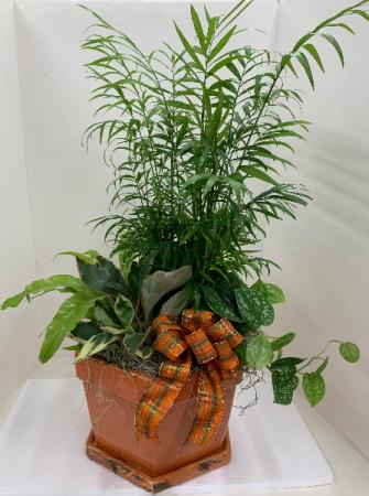 Fall Rustic Pot Dish-Garden Dish-Garden