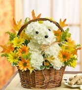 "Fall Dogable ""Snargles"" Fresh Flowers in a doggie basket"