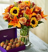 Fall Vase  & Dipped Strawberries Flowers & Fruit