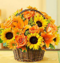 Fall Field of Flowers     FHF-131 Basket Arrangement