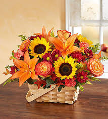 Fall Fields Of Europe Basket Arrangement in Lexington, NC | RAE'S NORTH POINT FLORIST INC.