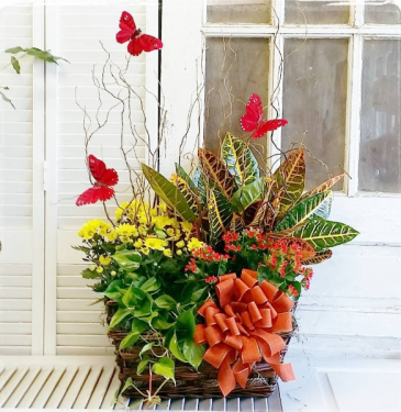 Fall Flutters  European Garden Basket