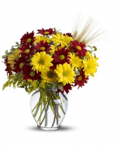 Fall for Daisies Arrangement