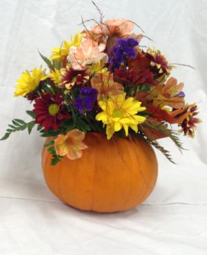 Fall Ceramic Pumpkin Arrangement  in Dayton, OH | FLOWERAMA