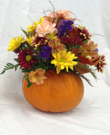 Fall Fresh Pumpkin Arrangement