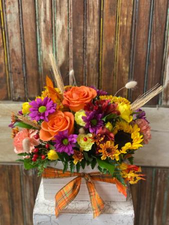 Fall Garden Box