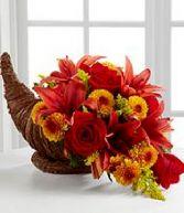 Fall Harvest Cornacopia