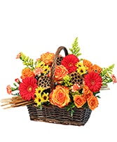 Fall In Flowers Basket Arrangement in Merrimack, New Hampshire | Merrimack Flower Shop & Greenhouse