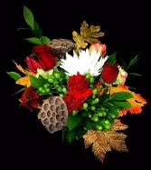 Fall Lotus Pod  Harvest Design