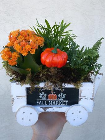 Fall Market Planter