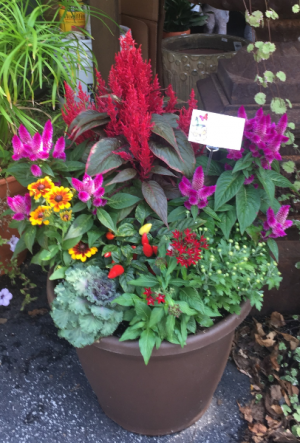 Fall Mix Planter in Iowa City, IA   Every Bloomin' Thing